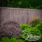 Illusions V300-6 Walnut Woodgrain Privacy Fence is an absolutely gorgeous addition to your landscaping. It blends perfectly in the background of almost every yard. #fence #fences #fenceproducts #vinylfence #vinylfences #pvcfence #pvcfences #woodgrain #walnut #illusionsfence #easternfence #landscapingideas #poolfence #poolideas #backyard #frontyard #curbappeal