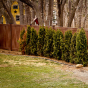 V300-6 - Grand Illusions Vinyl WoodBond Walnut (W103) T&G Privacy Fence