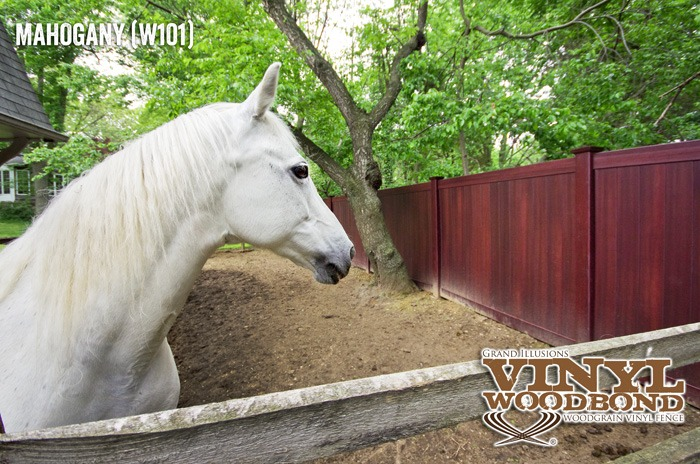 horse fence_4