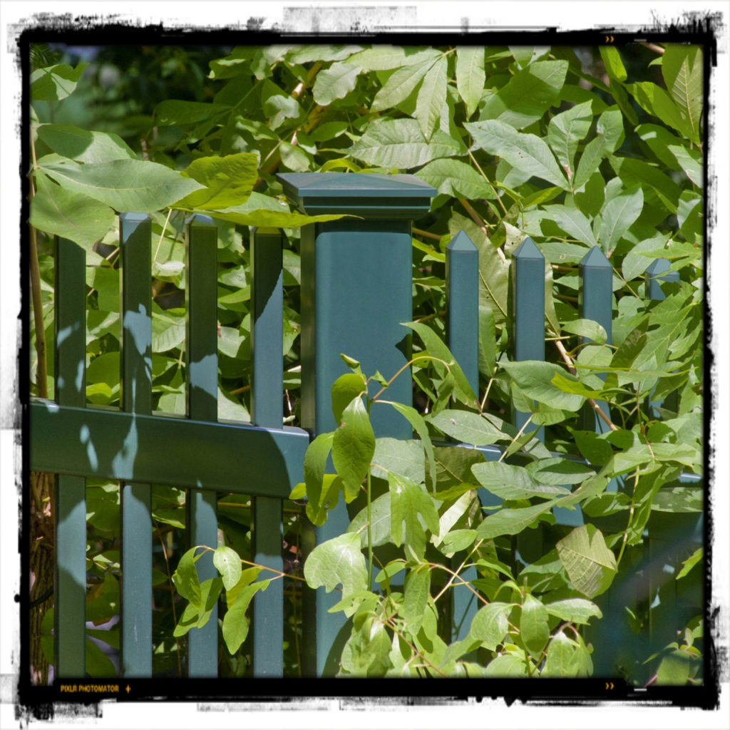 green pvc vinyl picket fence panels 1