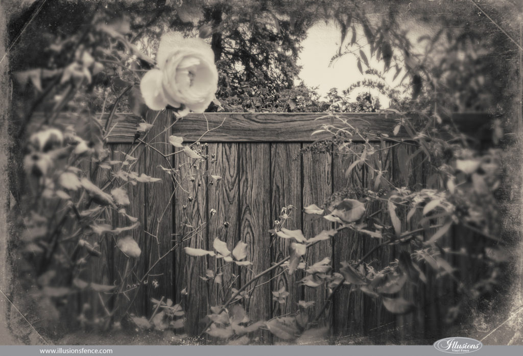 illusions walnut vintage black and white fence